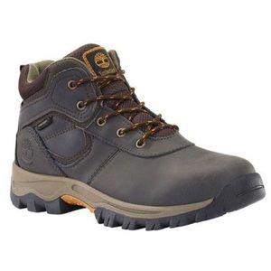 Timberland  Mt. Maddsen Waterproof Hiking Boots